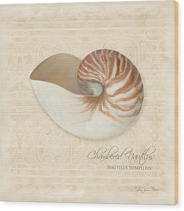 Inspired Coast Iv - Chambered Nautilus, Nautilus Pompilius Wood Print by Audrey Jeanne Roberts