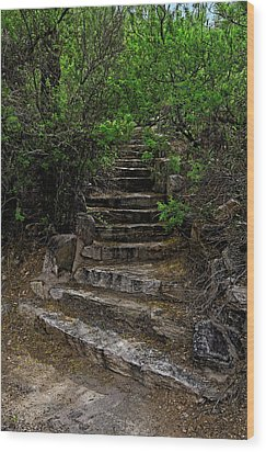Wood Print featuring the photograph Instep With Nature V53 by Mark Myhaver