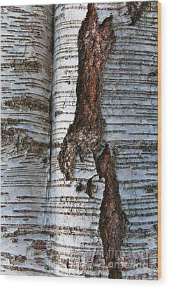 Wood Print featuring the photograph Interrupted by Werner Padarin