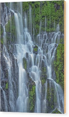 Wood Print featuring the photograph Intimate Burney Falls by Patricia Davidson