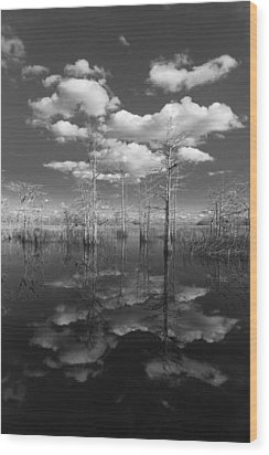 Into The Everglades Wood Print by Debra and Dave Vanderlaan