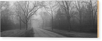 Into The Fog Wood Print by David April