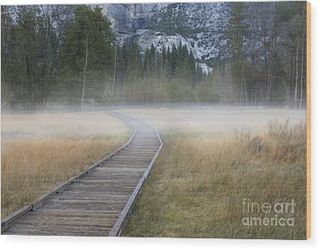Wood Print featuring the photograph Into The Mist by Sandra Bronstein