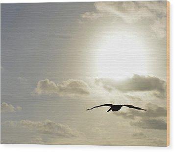 Into The Sun Wood Print by Sebastien Coursol