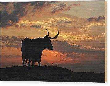 Into The Sunset Wood Print by Robert Anschutz