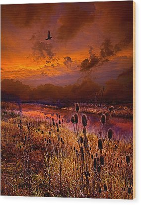 Intuition Wood Print by Phil Koch
