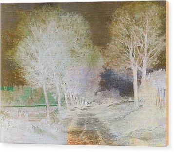 Inv Blend 4 Sisley Wood Print