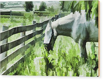 Wood Print featuring the digital art Iowa Farm Pasture And White Horse by Wilma Birdwell