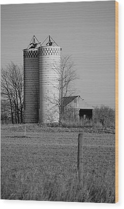Iowa Towers 1 Wood Print