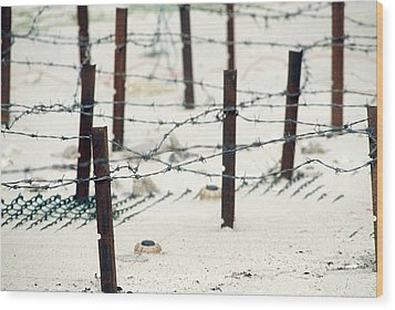 Iraqi Anti-personnel Mines And Barbed Wood Print by Everett