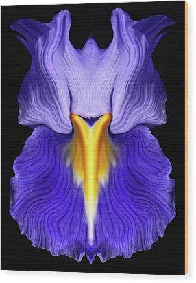 Iris Wood Print by Gary Zuercher