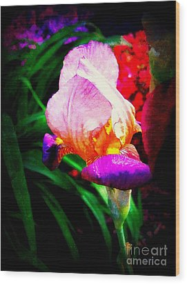 Iris Glow Wood Print by Janine Riley