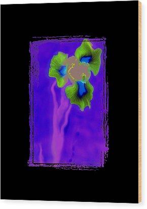Iris Wood Print by K Randall Wilcox