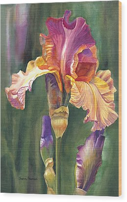 Iris On The Warm Side Wood Print by Sharon Freeman