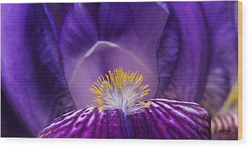Iris Upclose Wood Print
