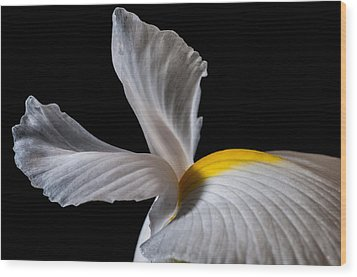 Iris Wings Wood Print