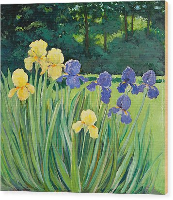 Irises In The Garden Wood Print by Betty McGlamery