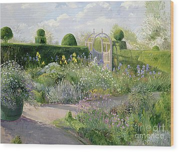 Irises In The Herb Garden Wood Print by Timothy Easton