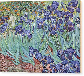 Irises Wood Print by Pg Reproductions