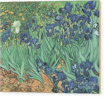 Irises Wood Print by Vincent Van Gogh
