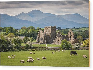 Irish Country Side Wood Print by Pierre Leclerc Photography