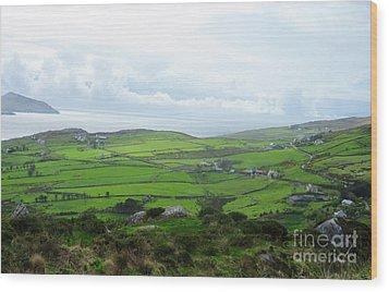 Irish Countryside 5 Wood Print