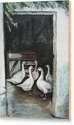 Wood Print featuring the painting Irish Ducks by Melinda Saminski