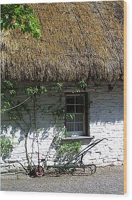 Irish Farm Cottage Window County Cork Ireland Wood Print by Teresa Mucha