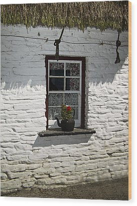 Irish Kettle Of Geraniums County Cork Ireland Wood Print by Teresa Mucha