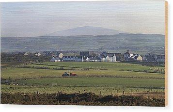 Irish Sheep Farm II Wood Print by Henri Irizarri