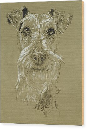 Irish Terrier Wood Print by Barbara Keith