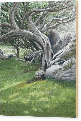 Irish Tree Ring Of Kerry Wood Print by Joan Swanson