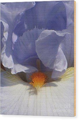 Iris's Iris Wood Print