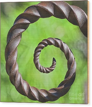 Iron Spiral Wood Print by Stephanie Hayes