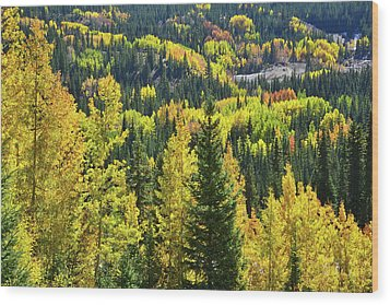 Wood Print featuring the photograph Ironton Fall Color by Ray Mathis