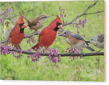 Is It Spring Yet? Wood Print by Bonnie Barry