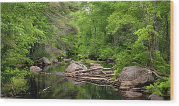 Isinglass River, Barrington, Nh Wood Print by Betty Denise