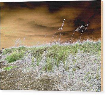 Island Dune Wood Print by Peter  McIntosh