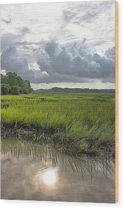 Wood Print featuring the photograph Island by Margaret Palmer