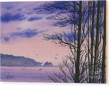 Wood Print featuring the painting Island Point by James Williamson