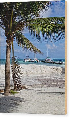 Island Scene Wood Print by Mamie Thornbrue