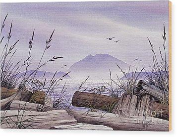 Island Splendor Wood Print by James Williamson