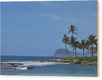 Wood Print featuring the photograph Island View by Amee Cave