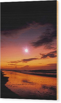 Isle Of Palms Wood Print by Gerard Fritz