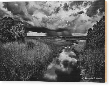Isolated Shower - Bw Wood Print by Christopher Holmes