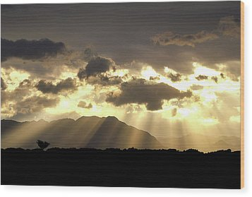 Israeli Desert Sunrise At Timna Wood Print by Yoel Koskas