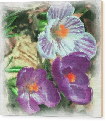 Ist Flowers In The Garden 2010 Wood Print by David Lane