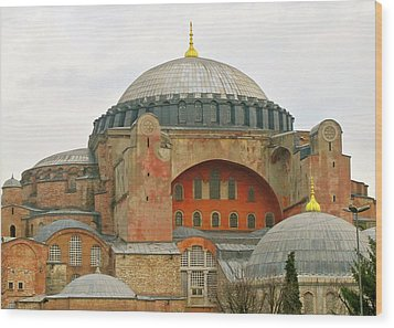 Wood Print featuring the photograph Istanbul Dome by Munir Alawi