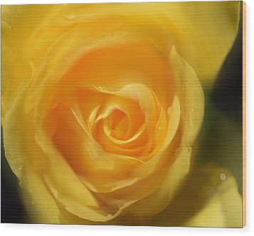 Wood Print featuring the photograph It Is At The Edge Of The Petal That Love Waits by Douglas MooreZart
