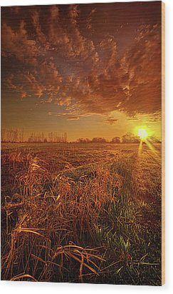 Wood Print featuring the photograph It Just Is by Phil Koch
